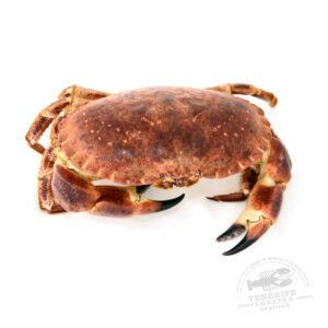 mariscostenerife-lobster-seafood-tenerife-buey-de-mar-00